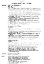 Risk Senior Manager Resume Samples Velvet Jobs