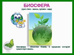 Презентация на тему Биосфера живая оболочка Земли по географии  Презентация на тему Биосфера живая оболочка Земли