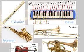 Alat musik ini juga termasuk jenis perkusi autophones atau idiophones dan juga salah satu bagian penting dari musik rumba, salsa, cuba, charamga, dan trova ensemble. Pengertian Macam Dan Contoh Alat Musik Melodis Cute766