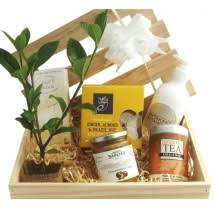 sympathy gift thinking of you tree gifts nz