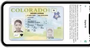 Make Your Own Identification Card Mycolorado Digital Id Stores Drivers License Id Card