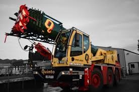 Up To 60 Tonnes Quinto Crane And Plant
