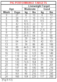 Show Pig Weight Gain Chart 31 Scientific Pig Feed Intake Chart