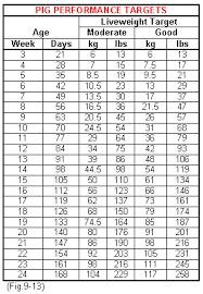 31 Scientific Pig Feed Intake Chart