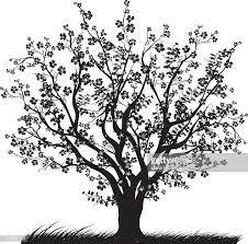 60点のサクラの木のイラスト素材クリップアート素材マンガ素材