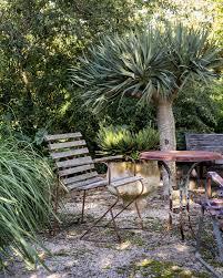 Designer Trees For Small Gardens Plant Life Michael Cooke Garden Small Garden Design