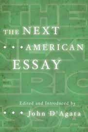 the next american essay graywolf press the next american essay