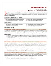 Professional Resume Templates Concise Compelling Attractive