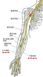 「手の神経」の画像検索結果