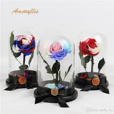 2019 amaryllis a grade forever high quality real touch flower whole preserved roses in glass dome lasting long everlasting from stella lyj