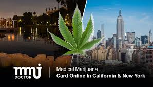 Our telehealth evaluations carry no extra cost. How To Get Mmj Card Online In Ca Ny Mmj Doctor