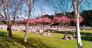 Aramoho Cemetery, Aramoho, New Zealand - Surnames N