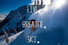 Skiing Quotes Magnificent Skiing Quotes Shared By Georgia Mealings On We Heart It
