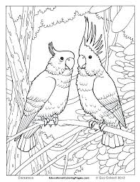Dove Coloring Page Dove Coloring Page Free Coloring Pages Of Dove