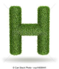 H C Infusion Color Chart Natural Grass Letter H