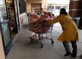 Modern Furniture Stores San Jose New San Jose Raw Pork Delivery Via Shopping Cart Spurs Probe