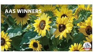 garden seed companies. Buy Now Garden Seed Companies