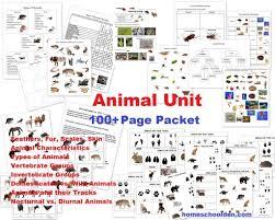 Animal Classification Chart Invertebrates Animal Unit Vertebrate Invertebrate Animals Worksheet