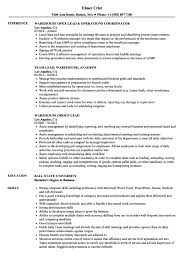 Warehouse Resume Sales Warehouse Resume Samples Velvet Critique Essay Outline 56