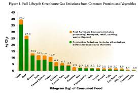 productivity environmental sustainability the carbon footprint of pulse production