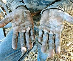 Resultado de imagem para Dia Nacional de Combate ao Trabalho Escravo, Brasil.