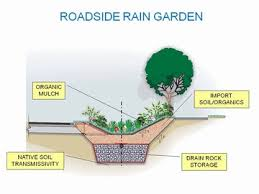 Small Picture Garden Design Garden Design with Rain Dog Designs Landscaping