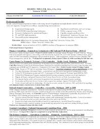cfo resume samples construction cfo resume examples executive