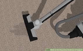 image titled get dog urine smell out of carpets step 9