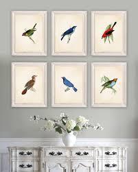 dining room artwork prints. Audubon Bird Prints. Art. Print. Dining Room Decor. Living Art Kitchen. Farmhouse. NS791 Artwork Prints