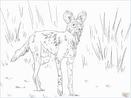 Golden Wolf Coloring Book Fresh Wolves Color Drawn Wolf Baby Pencil