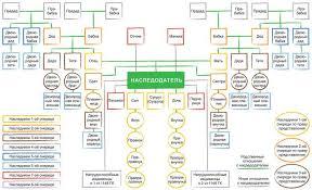 схема наследование по закону Портал правовой информации  схема наследование по закону фото 3