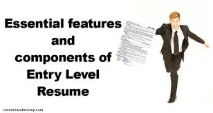 Essential Features And Components Of Entry Level Resume Delectable Resume Features