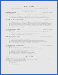 20 Awesome Resume Template Creative Free Ncgardenucsd Com