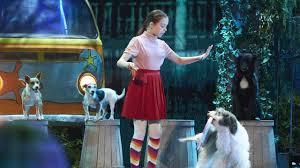 NBC Montana - Cute And Funny Dog Tricks ...