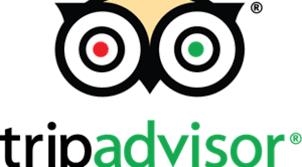 tripadvisor-logo-BCBFF13E11-seeklogo.com - AirportTaxiTours.is