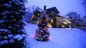 christmas snow hd. Interesting Christmas Xmas Stuff For U003e Christmas Tree Snow Scene To Hd 2