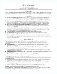 Advertising Account Executive Resume Samples Resume Layout Com