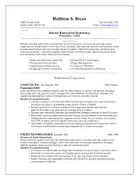 Sample Resume Of Ceo Ceo Sample Resume Resume Samples 6