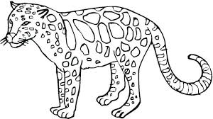 Wild Animal Coloring Pages For Preschoolers Coloring Pages Of Wild