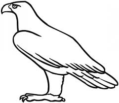 Small Picture Printable Drawings Of EaglesDrawingsPrintable Coloring Pages