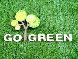 going green a solution for environmental problems business  going green a solution for environmental problems