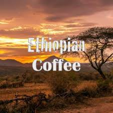 Climate change is a serious threat to ethiopia's coffee production, particularly because of the increasing incidence and duration of drought. Best Ethiopian Coffee Brands In 2021 Reviewed Kitchensanity