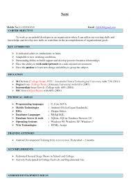 ... developer resume 100 resume format summary 100 mba graduate resume  summary ...