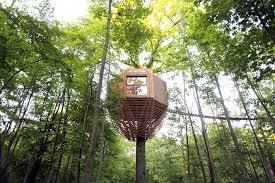 treehouse. Atelier LAVIT Treehouse N