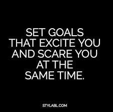 Goals Quotes Extraordinary Career Goal Quotes Thevillasco