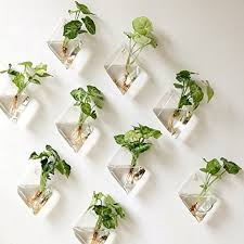 wall hanging gl planter plant flower terrarium indoor home decor