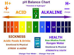 Orp Chart Beverage Tests Ph And Orp Kangen Net Kangen And Ionized