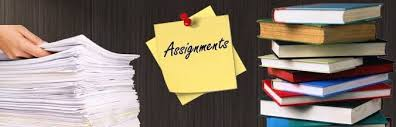 need urgent help assignments roodepoort gumtree  need urgent help assignments