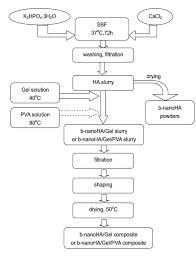 structure and properties of bone like nanohydroxyapatite gelatin polyvinyl alcohol composites