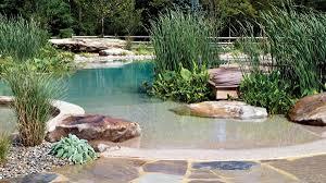 natural looking in ground pools. Swim Ponds Versus Natural Swimming Pools Natural Looking In Ground Pools M